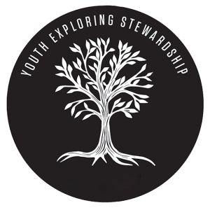 youth exploring stewardship logo